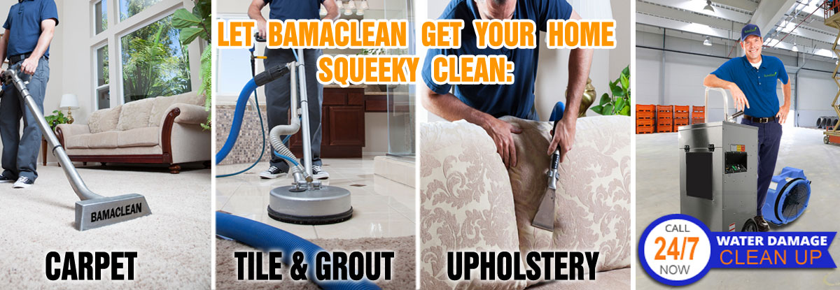 Carpet Cleaning Water Damage Fire Damage Mold